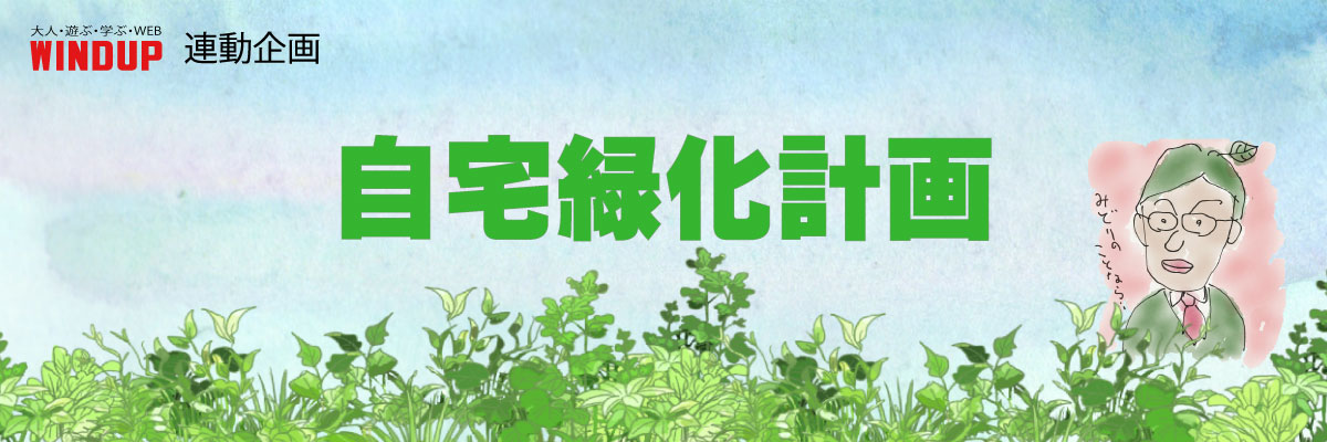 自宅緑化計画