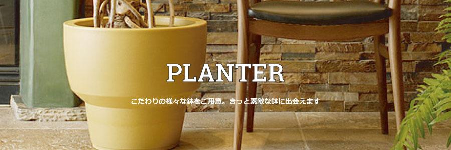 【グリーン】PLANTERのカテゴリー