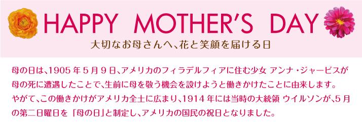母の日節女