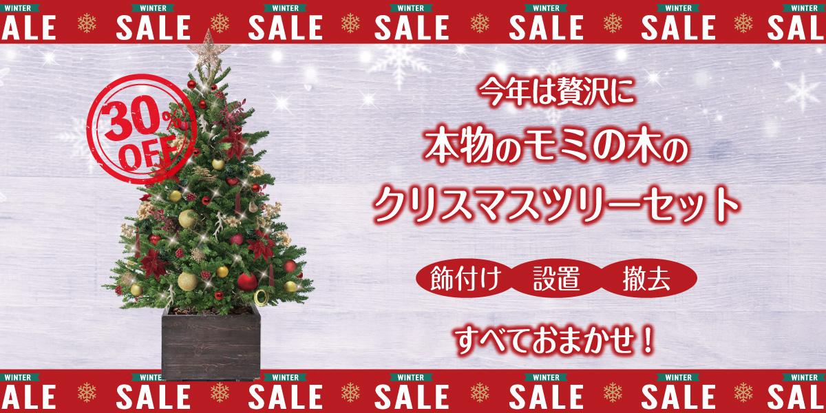 クリスマスディスプレイ特集